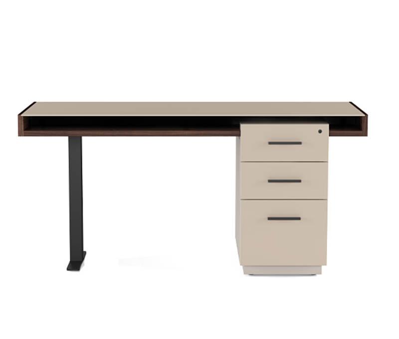 Duo Desk & File